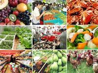 Thử nghiệm an toàn chất lượng thực phẩm
