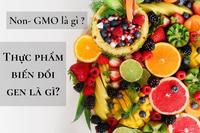 Thử nghiệm vi sinh - sinh vật biến đổi gen (GMO)