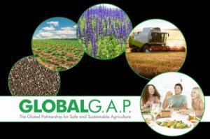 Lịch sử và sự ra đời của tổ chức GAP các nước: EurepGAP, GlobalGAP, AseanGAP, MalaysiaGAP, ThaiGAP, ChinaGAP, JapanGAP, IndiaGAP và VietGAP
