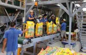 Chuyển giao toàn phần công nghệ sản xuất phân bón