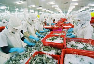 Chứng nhận VietGAP cho cơ sở nuôi trồng thủy sản