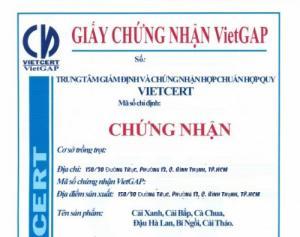 Cục Trồng trọt chỉ định VietCERT là Tổ chức chứng nhận VietGAP trồng trọt